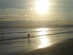 beachdawn