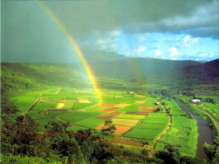 7-rainbow-photography-preview-1